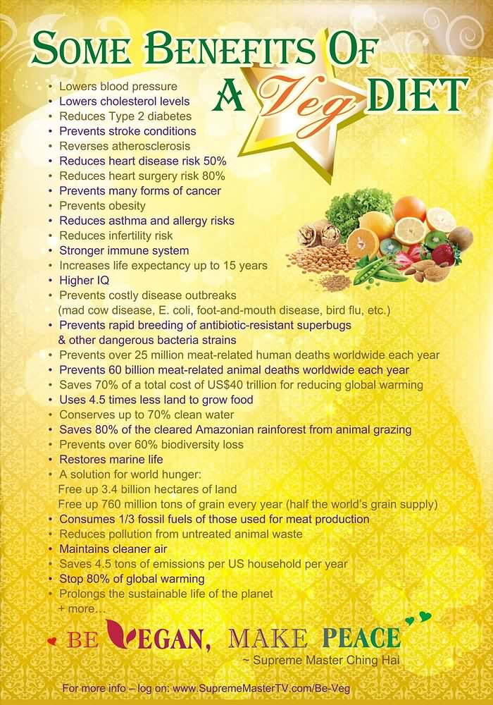 the benefits of being a vegetarian essay List of pros of being a vegetarian 1 it's good for your health obviously, eating more fruits and vegetables can help you become healthier for one thing, you'll increase your vitamin and mineral intake, which means you can provide your body with the nutrients it needs to repair itself and create new cells.